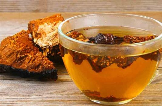 Siberian Chaga - the new old superfood