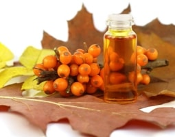 Sea buckthorn oil - natural remedy for many diseases