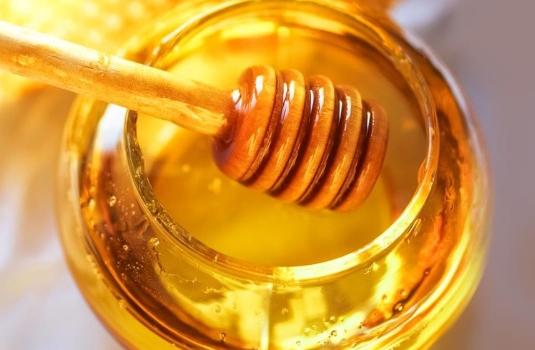 Useful properties of Bulgarian honey (17 folk recipes)
