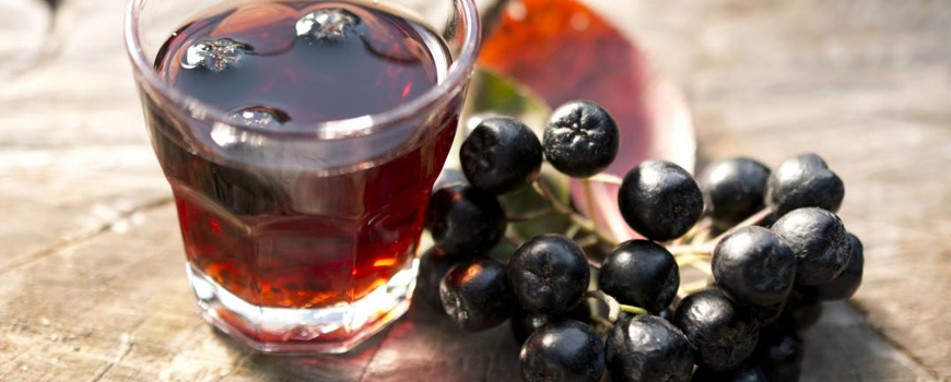 Aronia juice - a balm for high blood and atherosclerosis