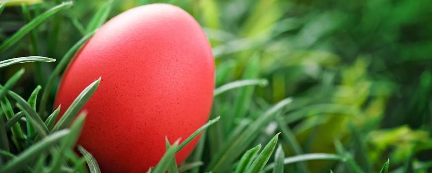 Боядисване на Великденски яйца с корени от Брош