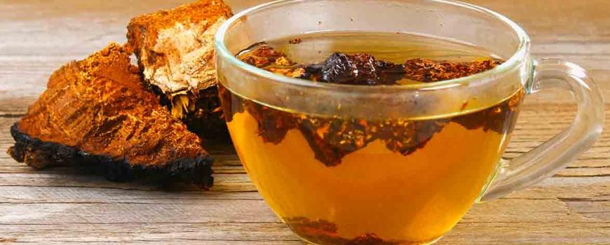 Сибирската гъба Чага - новата стара суперхрана