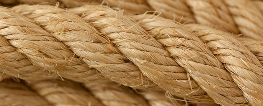 Биохимично въздействие на конопените продукти - Коносан