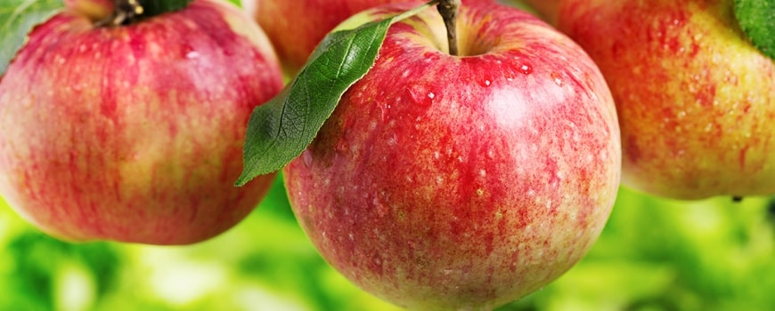 Apple pectin - a valuable assistant in many diseases!