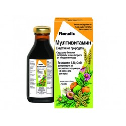 Multivitamin, herbal extracts and fruit juices, Floradix, 250 ml.