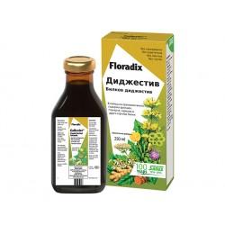 Digestive, liquid digestion elixir, Floradix, 250 ml