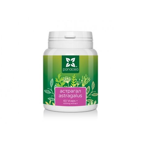 Астрагал, Панацея, 60 растителни капсули