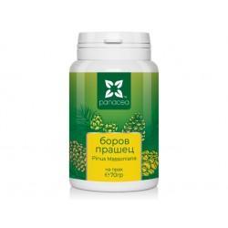 Pine Pollen powder, Panacea, 70 g