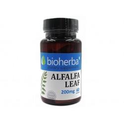 Люцерна (Алфалфа) - лист, Биохерба, 60 капсули