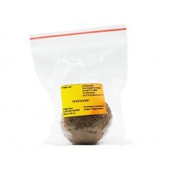 Пчелен клей (прополис), топче, Амброзия, 30 гр.